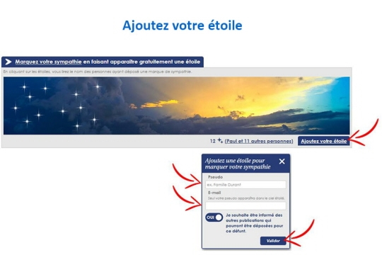 Cliquez sur Ajoutez votre étoile. Une fenêtre s'ouvre pour que vous puissiez signer cette étoile par un pseudo, votre prénom par exemple. Saisissez aussi votre e-mail celui-ci n'apparaîtra pas. Cliquez sur Valider.