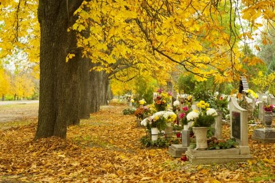 Au moment de la Toussaint, de nombreuses familles se rendent au cimetière pour fleurir les tombes de leurs défunts.