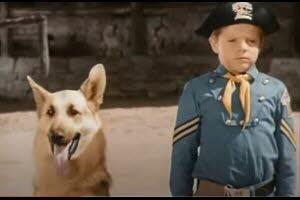 "L'acteur Lee Aaker, le petit orphelin de la série culte ""Rintintin"""