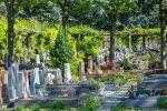 Concessions funéraires : achat et renouvellement